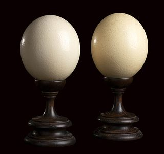 PAIR OF ANCIENT OSTRICH EGGS