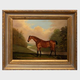 After William Shipley (1714-1803): Portrait of a Bay Horse
