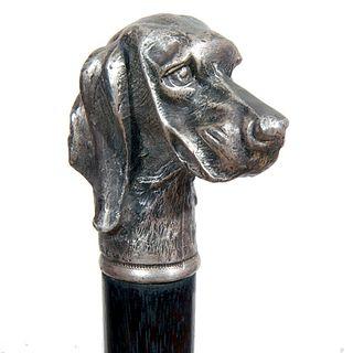 Defensive Dog Cane