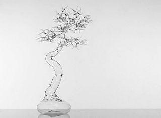 Simone Crestani - Glass Bonsai