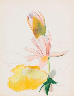 Joseph Stella (American, 1877-1946) Two Magenta Waterlilies, c. 1930
