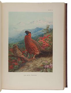 BEEBE, Charles William (1877-1962). A Monograph of the Pheasants. London: Witherby & Co., 1918-1922.