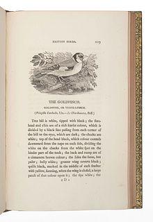BEWICK, Thomas (1753-1828). A History of British Birds. Newcastle: Edward Walker, 1804.