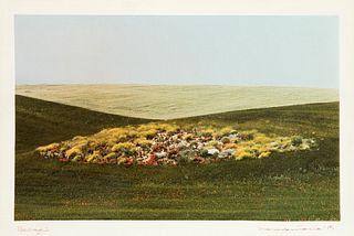 Franco Fontana (1933)  - Paesaggio, 1975