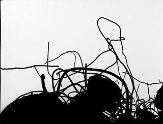 Mario Giacomelli (1925-2000)  - Favola per un viaggio verso possibili significati interiori, 1984