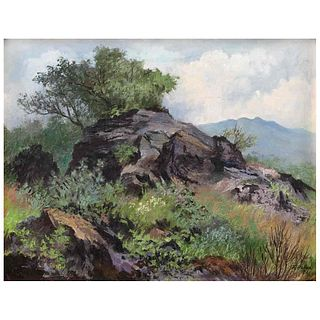 "FELICIANO PEÑA, Pirul en las rocas, Signed and dated 81 front and back, Oil on canvas on plywood, 13.9 x 17.9"" (35.5 x 45.5 cm)"