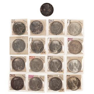 16 Different Silver Peace Dollars