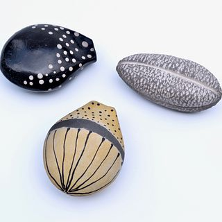 Seed Pod Collection(yellow, black, and textured)