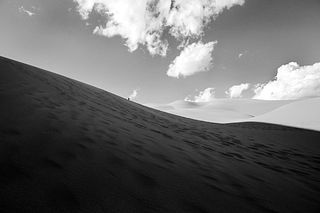 David Eichler, The Dark Side of the Dune