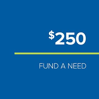 FUND-A-NEED: $250