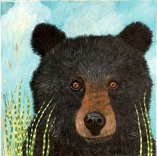 BARBARA JOHANSEN NEWMAN, Black Bear in Zebra Grass No. 2