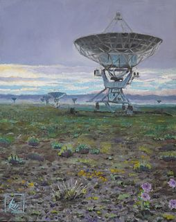 Aaron Richardson, Very Large Array #1