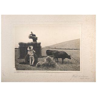 "HUGO BREHME, Cosecha de trigo, Sinaloa, Signed on mat Vintage print on Agfa paper on cardboard, 4.7 x 6.6"" size of image 6.8 x 9.8"""