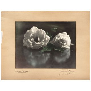 """RUBÉN NAVARRO, Las dos hermanas, Signed and dated México 1931 on mat Color vintage print on cardboad, 10.4 x 13.5"""" image measurements 1"""