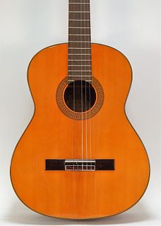Washburn Model C-40 Acoustic Folk Guitar