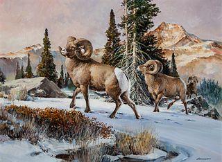 Richard Amundsen (1929–1997): Big Horn Sheep
