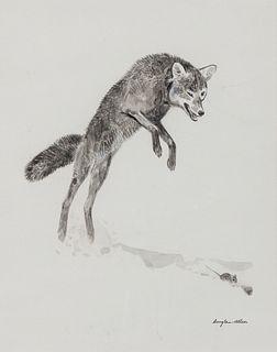 Douglas Allen (b. 1935): Pouncing Fox
