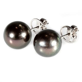 Tahitian cultured pearl and 18k white gold earrings