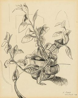 Richard 'Dick' Crisler, Untitled (Plant Still Life), 1928