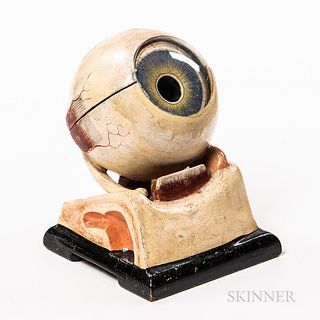 Early Plaster and Glass Anatomical Model of an Eye, five-part hand-painted model with labels, ht. 7 in.