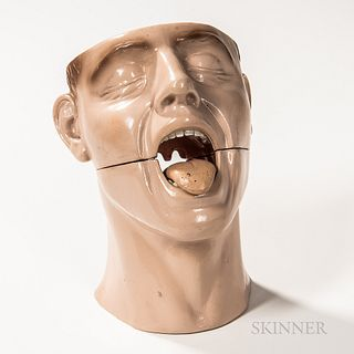Rubber Anatomical Model of a Tongue and Nose, split model bust with aligning pins, removable tongue and sinus cavity, ht. 10 in.