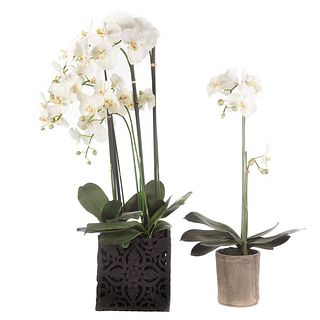 Two Potted Faux Orchids in Planters
