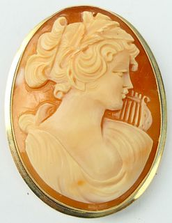 LARGE 14KT Y GOLD SHELL CAMEO