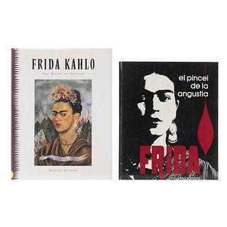 LIBROS SOBRE FRIDA KAHLO. Frida Kahlo: the brush of anguish / El Pincel de la  Angustia... Piezas: 2