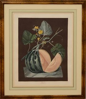 George Brookshaw framed melon aquatint engraving