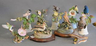Group of nine porcelain birds, Boehm hummingbird and morning glory, two Cybis birds on wooden stands, Boehm sparrows, and five Boehm birds with flower