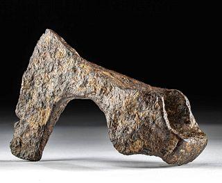 Viking Iron Bearded Axe Head - Skeggox