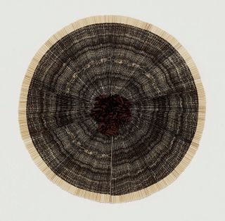 ANN HAMILTON -  ciliary #5, 2010
