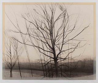 Sylvia Plimack Mangold  (American, b. 1938) The Pin Oak at The Pond, 1986