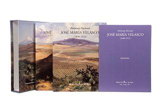 Altamirano, Piolla, María Elena. José María Velasco: Paisajes de Luz, Horizontes de Modernidad. México, 1993.1a. ed. Piezas: 2.