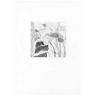 """JOSEP GUINOVART, Untitled, Signed and dated 76, Etching 24 / 45, 9.6 x 9.6"""" (24.5 x 24.5 cm), Label"""