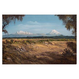 CARLOS PELESTOR (México, Siglo XX ) Paisaje de los volcanes. Firmado Óleo sobre masonite 60 x 40 cm