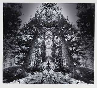 Jerry Uelsmann Surreal Redwood Pagoda Photograph