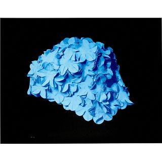 Carol Feuerman, silkscreen print