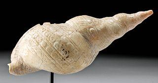 Maya Mollusk Shell Pendant w/ Intricate Incised Details