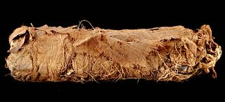 Egyptian Ptolemaic Linen Wrapped Mummified Cat w/ X-Ray
