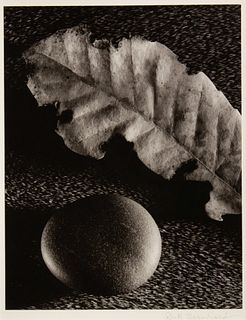 Ruth Bernhard (American, 1905-2006) Leaf and Stone