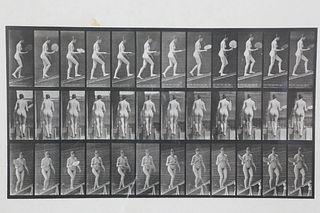 Eadweard Muybridge Animal Locomotion Plate 78, Copyright 1887