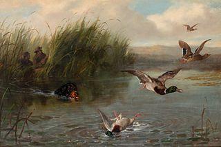Arthur Fitzwilliam Tait (1819-1905) Duck Shooting