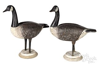 Pair of carved and painted Canada field decoys