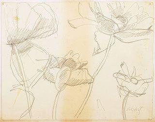 Alex Katz Floral Drawing