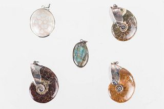 Fossilized Shell Pendants with Sterling Mounts