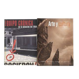 LIBROS SOBRE ARTE GRÁFICO Y CULTURA. a) Equipo Crónica en la Colección del IVAM. b) Arte y Cultura: Un Espacio para todos. Piezas: 2.