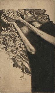 Bill Brauer Etching, 'Cecropia'