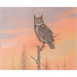 Owen Gromme Great Horned Owl Print, Eyes Of The Night