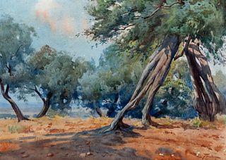 Edoardo Tani (Tivoli 1880-Roma 1948)  - Landscape with olive trees